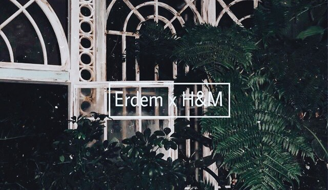 ERDEM X H&M + LOOKBOOK